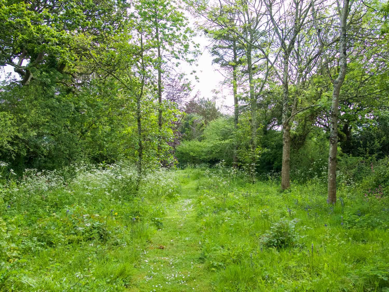 Pixies Cottage Garden